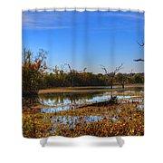 Brazos Bend Swamp Shower Curtain