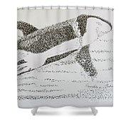 Breaching Orca Shower Curtain