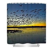 Breadfast Time Shower Curtain