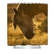 Breakfast - Signed Shower Curtain
