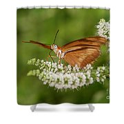 Breakfast With Julia Shower Curtain