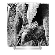 Breakfast With Mother Black And White Shower Curtain
