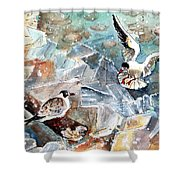 Breaking The Ice On Lake Constance Shower Curtain