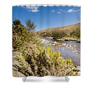 Breamish Valley In Spring Shower Curtain