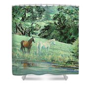 Breathing In Strength Unsaddled Shower Curtain