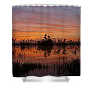 Breathtaking Florida Shower Curtain