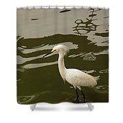Breeding Egret Shower Curtain