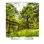 Breezy Spring Afternoon Shower Curtain