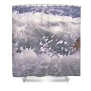 Brian Swimming In The Sea Shower Curtain