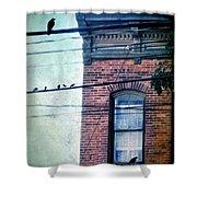 Brick Building Birds On Wires Shower Curtain
