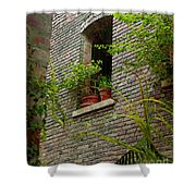 Brick With Greenery Shower Curtain