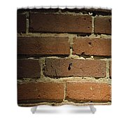 Bricks Shower Curtain