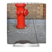 Bricks And Fire Shower Curtain