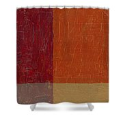 Bricks And Reds Shower Curtain by Michelle Calkins