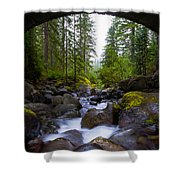 Bridge Below Rainier Shower Curtain by Chad Dutson