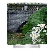 Stone Bridge Daisies Shower Curtain