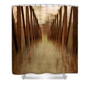 Bridge In Abstract Shower Curtain