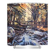 Morning Bridge In Woods Shower Curtain
