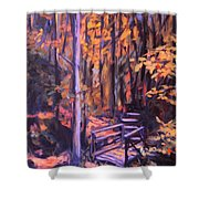 Bridge In Woods Near Pandapas Shower Curtain