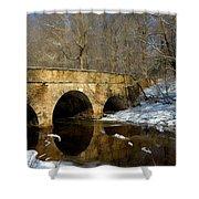 Bridge In Woods Shower Curtain