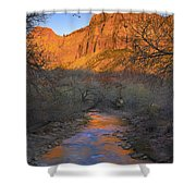Bridge Mt And The Virgin River Zion Np Shower Curtain