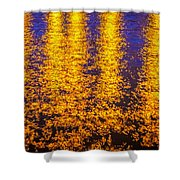 Bridge Of Lions Reflections St Augustine Florida Painted    Shower Curtain