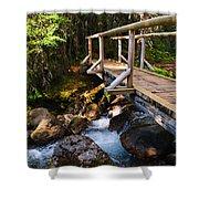 Bridge Over A Mountain Stream Shower Curtain