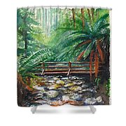 Bridge Over Badger Creek Shower Curtain