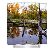 Bridge Over The Pond Shower Curtain
