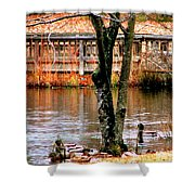 Bridge Spanning Pond Shower Curtain