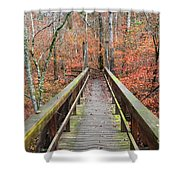 Bridge To Fall Shower Curtain