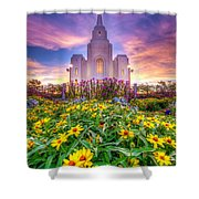 Brigham City Temple Shower Curtain