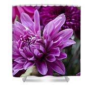 Bright And Beautiful Easter Mums Shower Curtain
