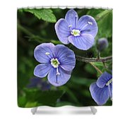 Bright And Blue Shower Curtain