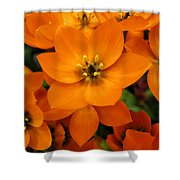 Bright And Lively Shower Curtain