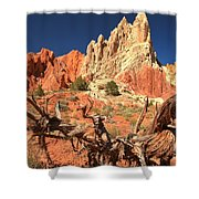 Bright And Twisted Shower Curtain