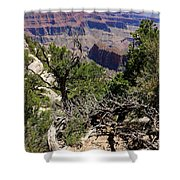 Bright Angel Point View Shower Curtain