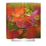 Bright Autumn Leaves Shower Curtain