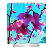 Bright Blossoms Shower Curtain
