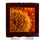 Bright Budding And Golden Abstract Flower Painting Shower Curtain