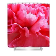 Bright Carnation Shower Curtain