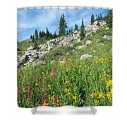 Bright Colors Of A Colorado Summer Shower Curtain