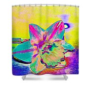Bright Daff Shower Curtain