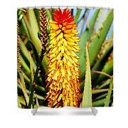 Bright Flower 2 Shower Curtain