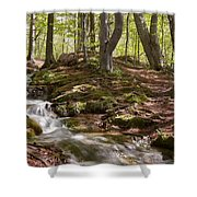 Bright Forest Creek Shower Curtain