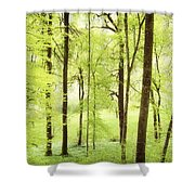 Bright Green Forest In Spring With Beautiful Soft Light  Shower Curtain