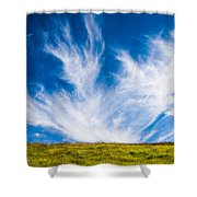 Bright Green Meadow And Deep Blue Sky Shower Curtain