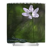 Bright Light Flower Shower Curtain