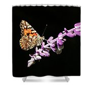 Painted Lady Butterfly On Purple Flower Shower Curtain