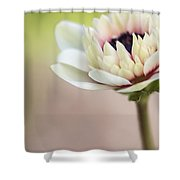 Bright Spring Shower Curtain